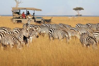 Maasai Mara best